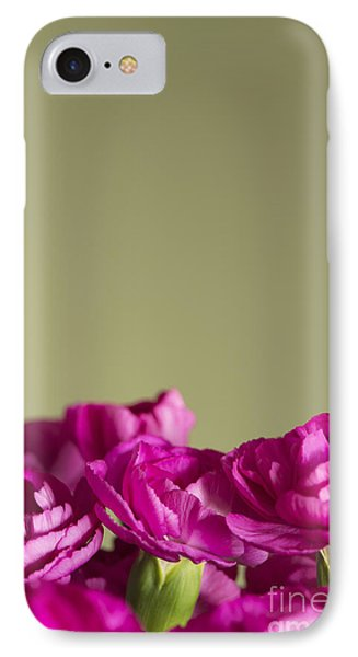 Darling Dianthus IPhone Case by Anne Gilbert