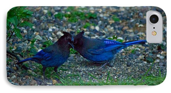 Darling I Have To Tell You A Secret-sweet Stellar Jay Couple IPhone Case by Eti Reid
