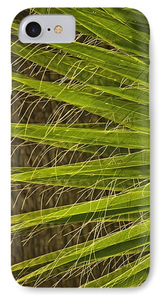 Date Palm IPhone Case by Sherri Meyer