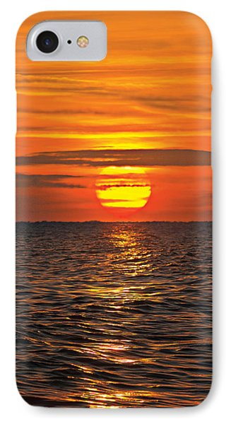 IPhone Case featuring the digital art Dawn Flight by David Davies