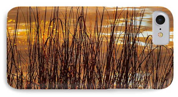 Dawn's Early Light Phone Case by Karen Wiles