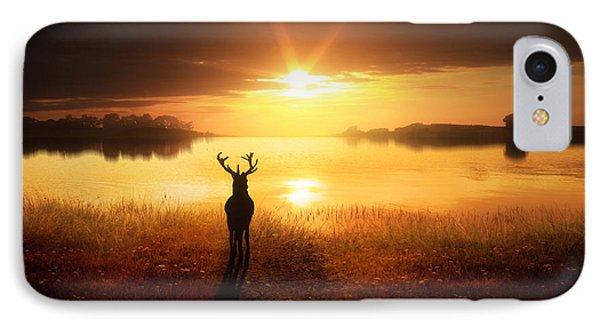 Dawn's Golden Light IPhone Case by Jennifer Woodward