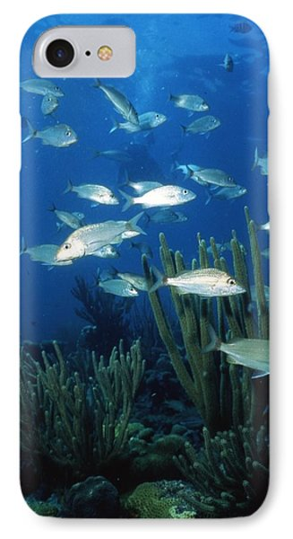 Day In The Ocean Phone Case by Retro Images Archive