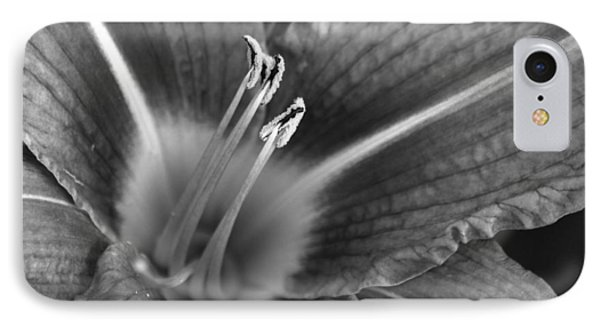 Day Lily In Black And White IPhone Case