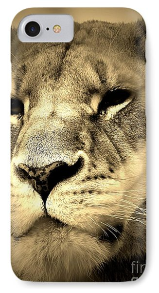 Daydreaming IPhone Case by Christy Ricafrente