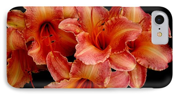 IPhone Case featuring the photograph Daylilies 1 by Rose Santuci-Sofranko