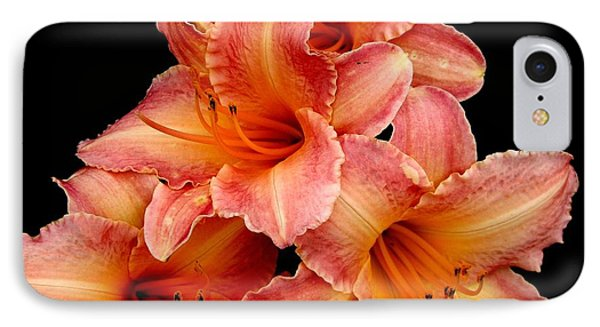 Daylilies 2 IPhone Case by Rose Santuci-Sofranko