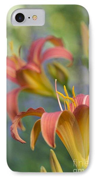 Daylily Hemerocallis Pink Prelude IPhone Case by Tim Gainey