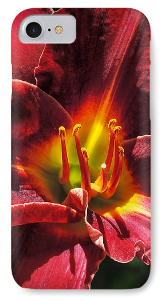 IPhone Case featuring the photograph Daylily Macro 002 by Lance Vaughn