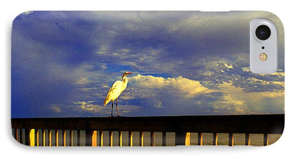 Daytona Beach Fl Bird Sun Glow Pier  IPhone Case