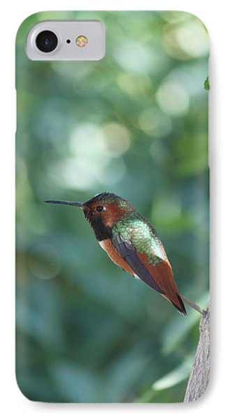 IPhone Case featuring the photograph Dazzling Gem by Amy Gallagher