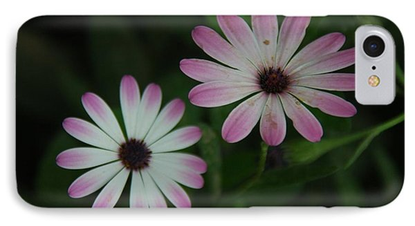 IPhone Case featuring the photograph Dbg 041012-0110 by Tam Ryan