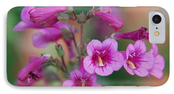 IPhone Case featuring the photograph Pink Flowers by Tam Ryan