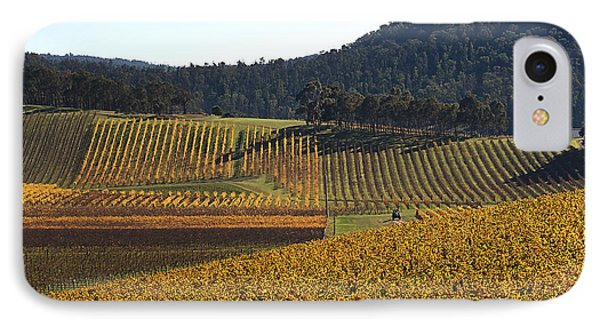 golden vines-Victoria-Australia IPhone Case by Joy Watson