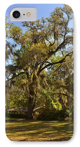 De Leon Springs - Classic Old Florida Phone Case by Christine Till