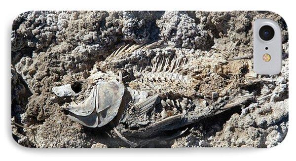 Dead Fish On Salt Flat IPhone 7 Case by Jim West