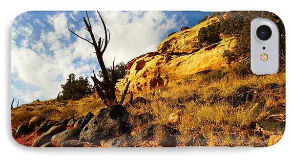 Dead Tree Against The Blue Sky Phone Case by Jeff Swan