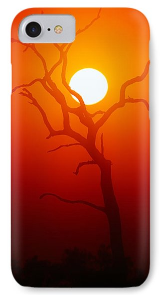 Dead Tree Silhouette And Glowing Sun IPhone Case by Johan Swanepoel