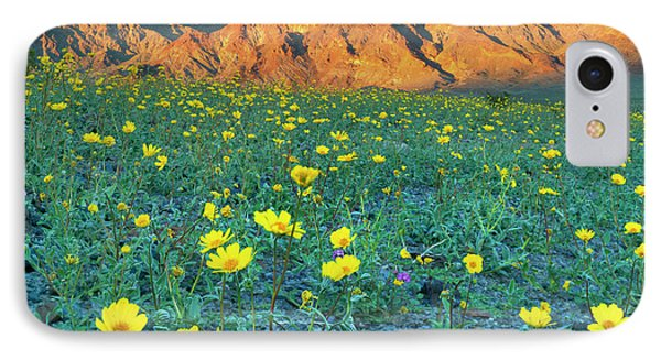 Death Valley National Park, California IPhone Case by Scott T. Smith