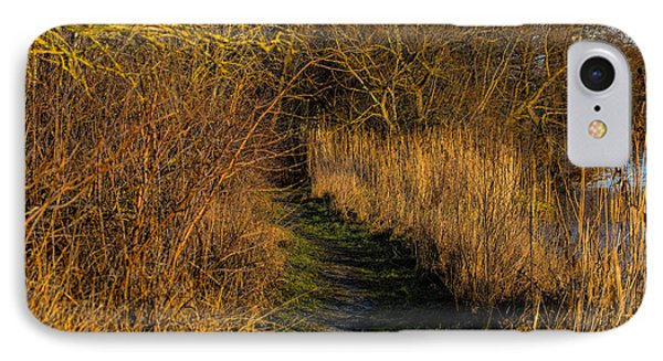 december light - Leif Sohlman IPhone Case