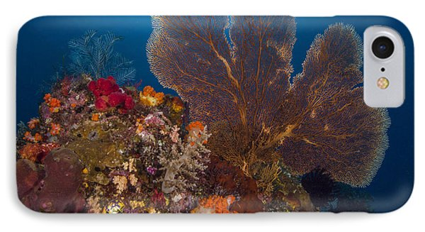 IPhone Case featuring the photograph Deep Fan Of Bali by Terry Cosgrave