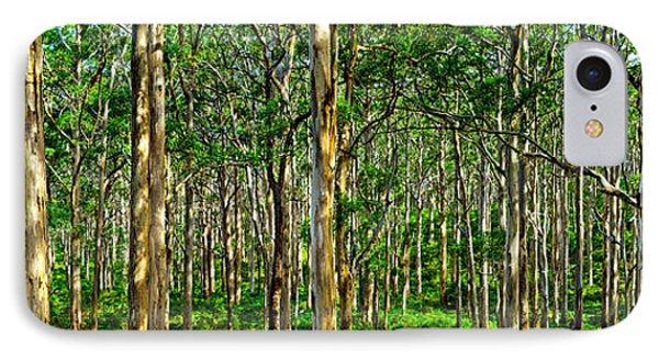 Deep Forest IPhone Case by Az Jackson