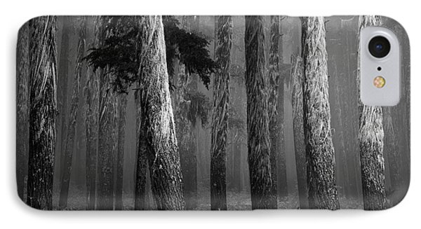 Deep Forest IPhone Case by Leland D Howard
