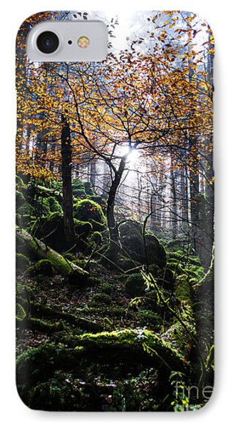 Deep Forest IPhone Case by Yuri Santin