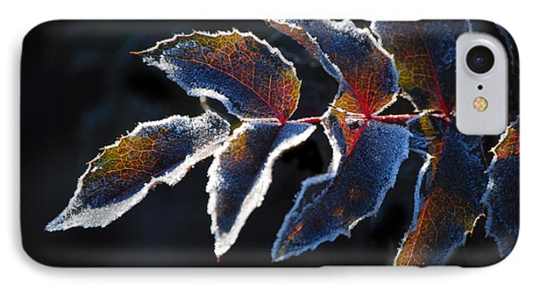 IPhone Case featuring the photograph Deep Frost by Janis Knight