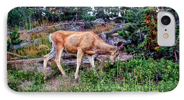IPhone Case featuring the photograph Deer 1 by Dawn Eshelman