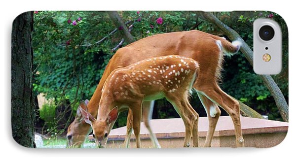 Deer And Fawn Phone Case by Adam L