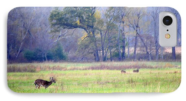IPhone Case featuring the photograph Deer At Cades Cove by Kenny Francis