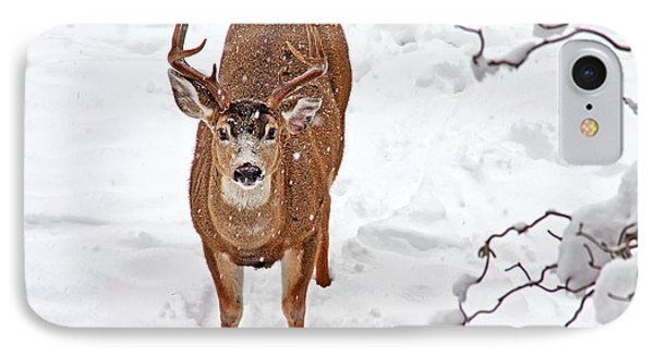 IPhone Case featuring the photograph Deer Buck In Snow by Peggy Collins