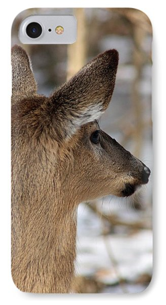 Deer Day Dreamer IPhone Case by Lorna Rogers Photography