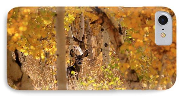 Deer In Aspen IPhone Case