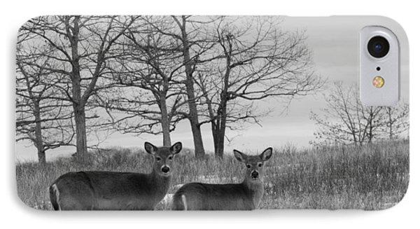 Deer In Meadow IPhone Case