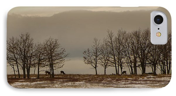 Deer In The Meadows IPhone Case