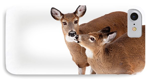 Deer Kisses IPhone Case by Karol Livote