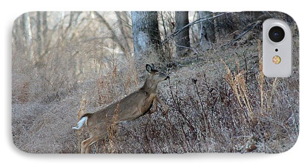 Deer Moving Upward Phone Case by Lorna Rogers Photography
