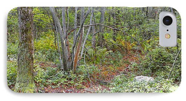 Deer Trail Early Autumn Pocono Mountains Pennsylvania IPhone Case by A Gurmankin