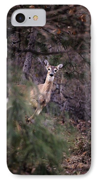 Deer's Stomping Grounds. IPhone Case by Joshua Martin