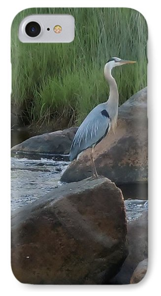 IPhone Case featuring the photograph Definitely Blue Heron by Francine Frank