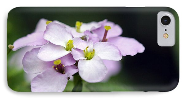 Delicate Beauty IPhone Case by Denise Pohl