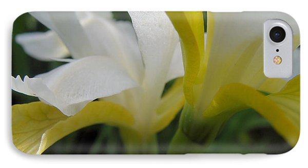 Delicate Iris IPhone Case by Cheryl Hoyle