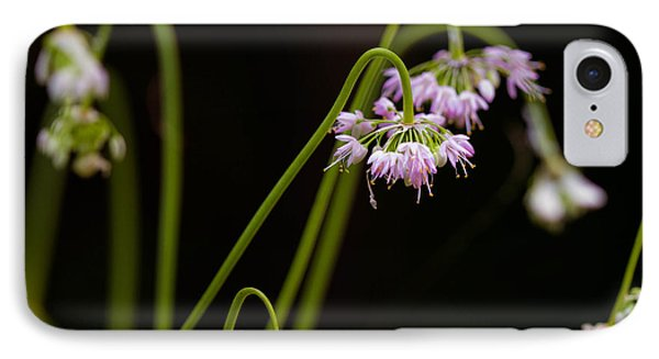 IPhone Case featuring the photograph Delicate Pink Drops by Haren Images- Kriss Haren