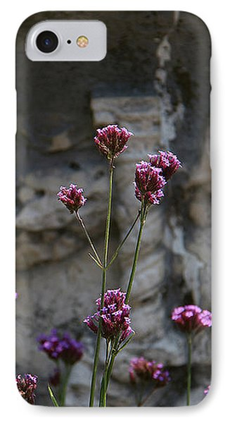 Delicate Pinks IPhone Case by Yvonne Wright