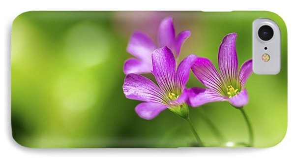 IPhone Case featuring the photograph Delicate Purple Wildflowers by Leigh Anne Meeks