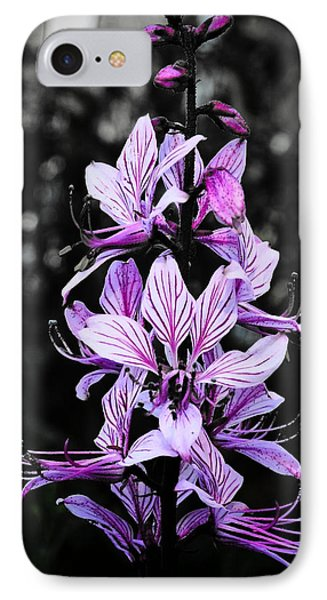 Delicate Violet IPhone Case