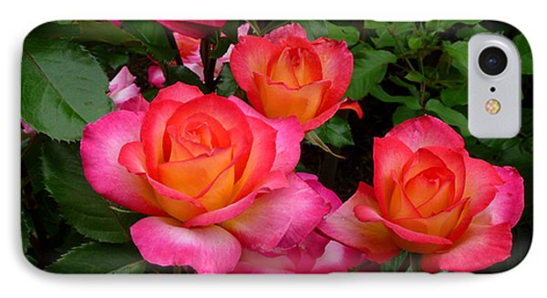 Delicious Summer Roses Phone Case by Richard Donin