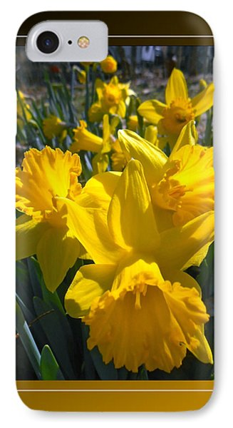 Delightful Daffodils Phone Case by Patricia Keller